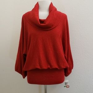 NWT Style&Co. Metallic Dolman Sleeve Sweater